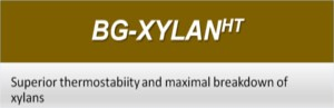 NSP Enzymes in Poultry - BG-XYLANHT