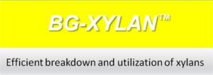 bg-xylan