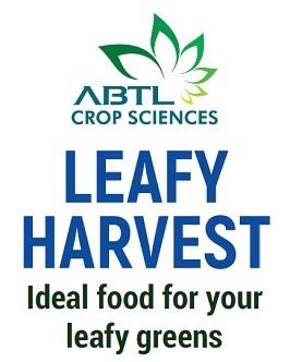 leafy-harvest